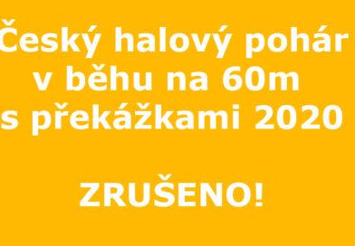 Český halový pohár – zrušen